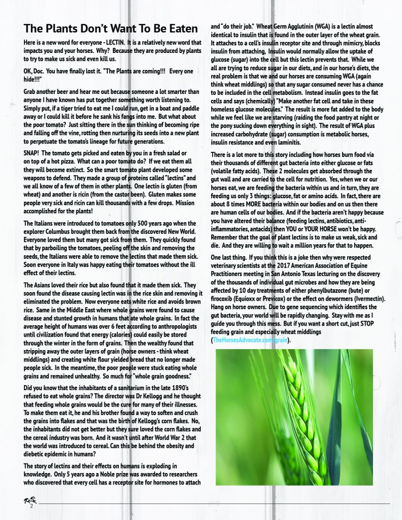 The Equine Practice Rounds™ Vol 2 Issue 2  page 2 of 5