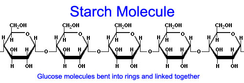 The Equine Practice Inc, starch molecule
