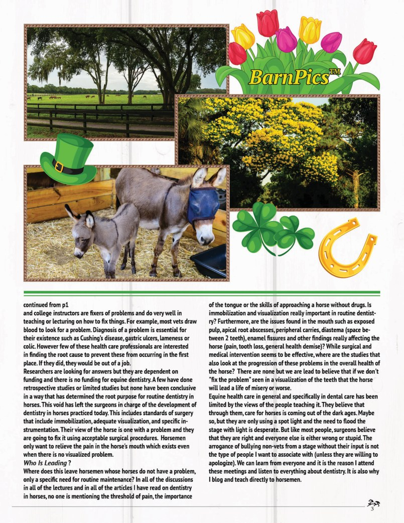 The Equine Practice Inc, The Equine Practice Rounds Vol 2 Issue 1 page 3