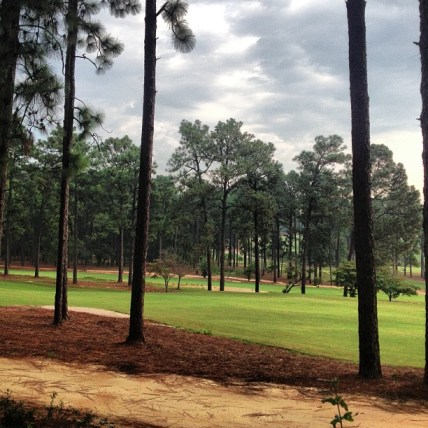 am Mid pines