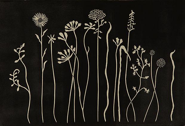 art black flowers
