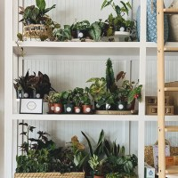 The Modern Planter at SHOP TEOT