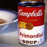 primordial soup