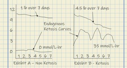 Ketosis Lab Notes – Mitochondrial Suppression Disorder | The