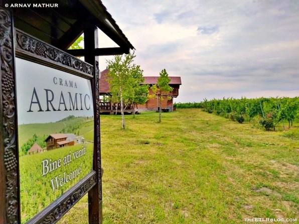 Crama Aramic Vineyard_001