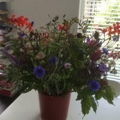 zomerboeket met korenbloem en crocosmia