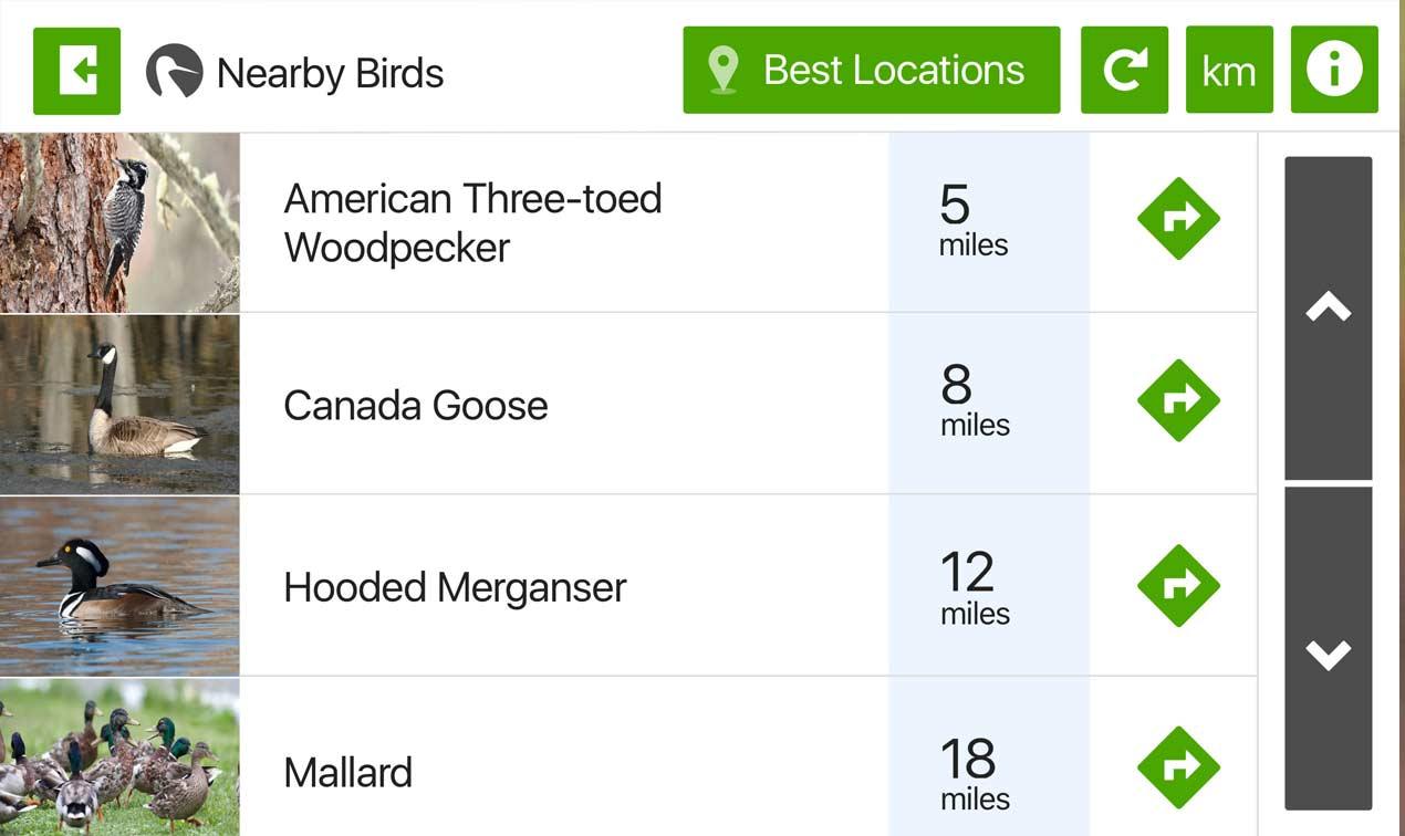 ebird - app for birding