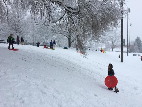 Kids sledding the (very) little hill at Walt Hundley Playfield in West Seattle. (Photo by Kim Sharpe Jones)
