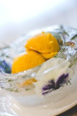 Homemade Ice Bowls with pansies and herbs, with Pumpkin and Thyme Ice Cream made by Love's