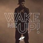 Beat of the Week: AVICII 'Wake Me Up'