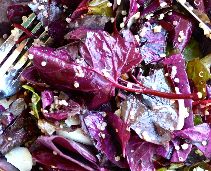 RED SPINACH in my breakfast Salad with quinoa, almonds, pears, and coconut in a cinnamon-cider dressing   www.theeverykitchen.com
