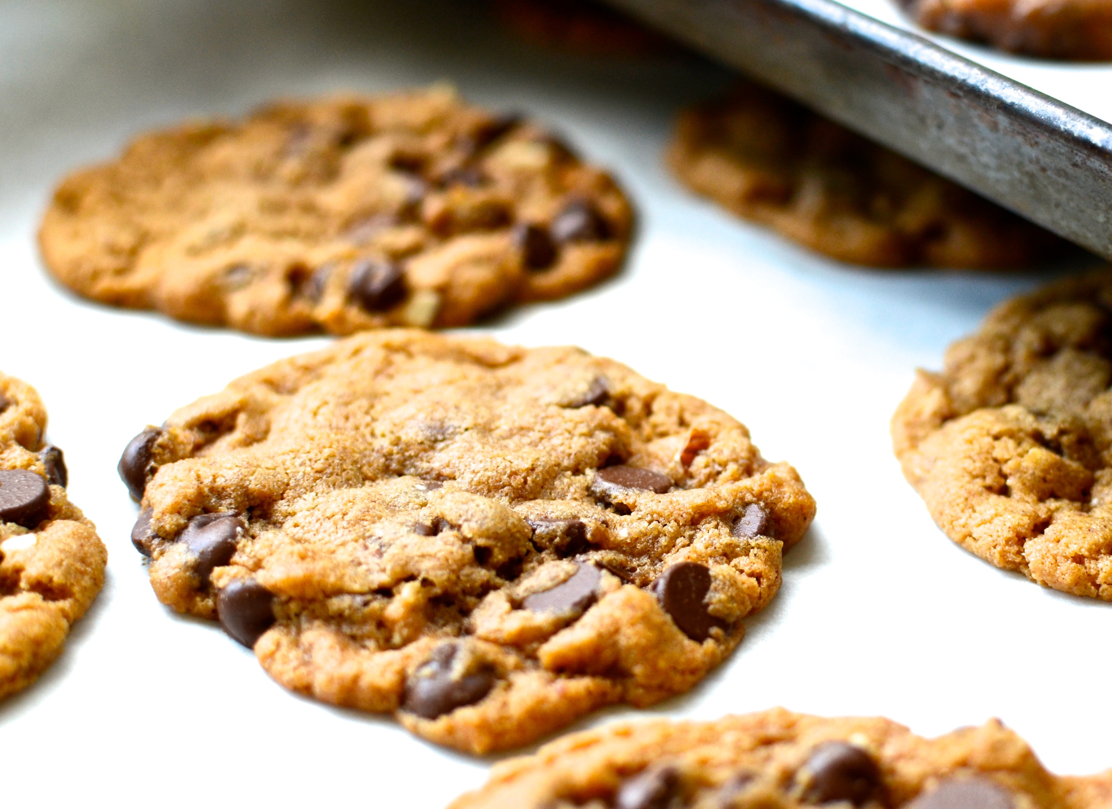 Flourless Almond Butter Chocolate Chip Cookies | www.theeverykitchen.com