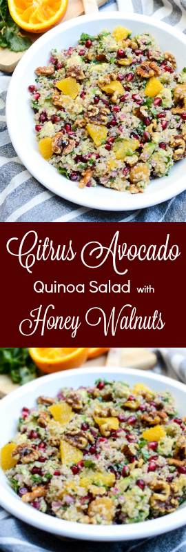Citrus Avocado Quinoa Salad with Honey Walnuts, will you marry me? This recipe is beautiful and colorful, sweet and bright and rich, crisp and creamy and juicy. | theeverykitchen.com
