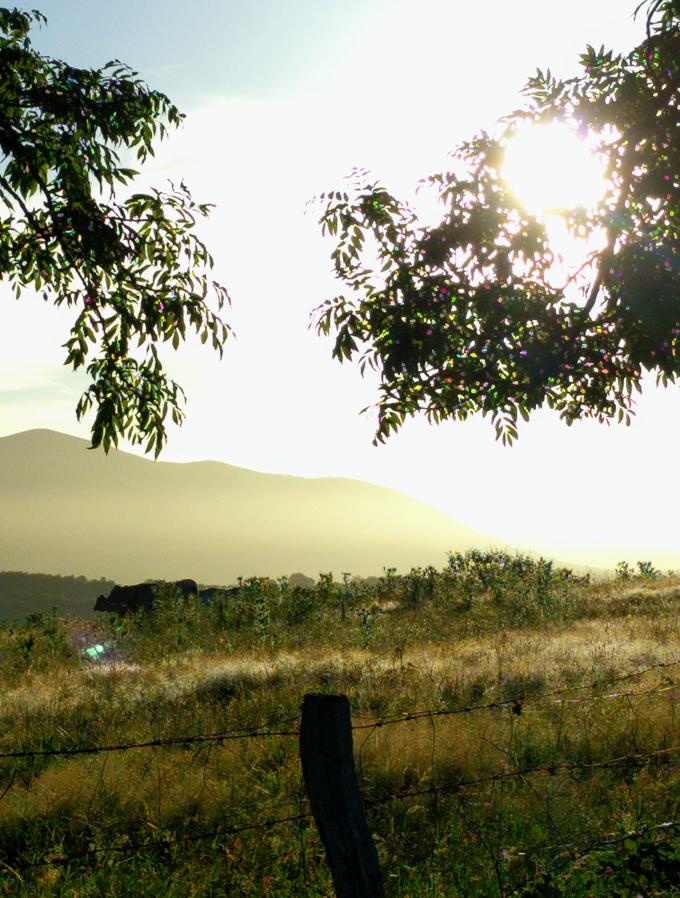 They Pyrenees, Camino de Santiago | theeverykitchen.com