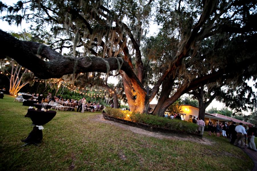 Rustic Backyard Florida Wedding