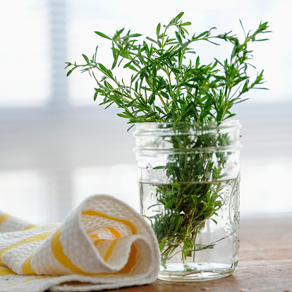 Jar of Rosemary