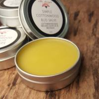 simple cottonwood bud salve