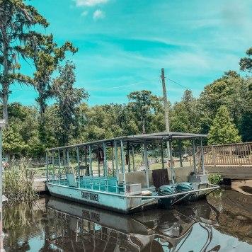 Swamp Tour12