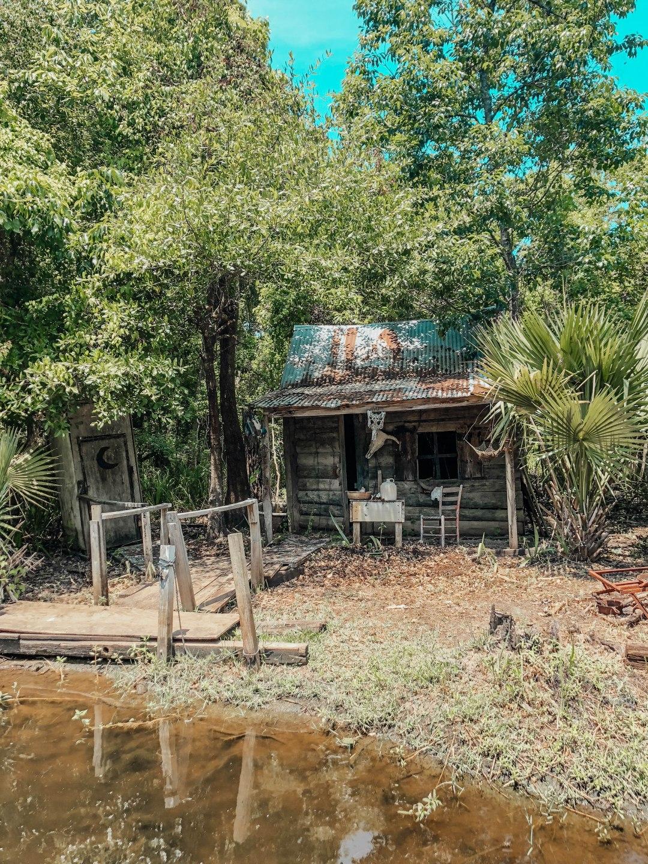 Swamp Tour39