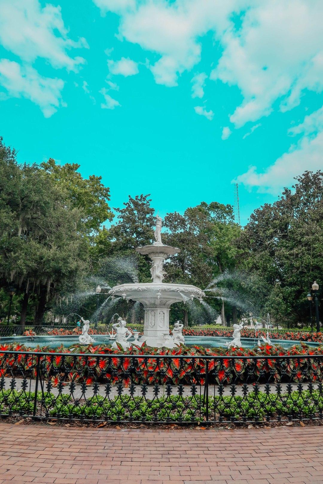 Savannah13