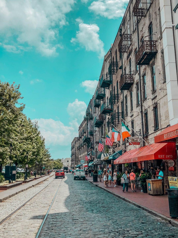 Savannah36