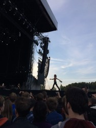 Iggy Pop struts along the catwalk, or maybe in his case dogwalk?