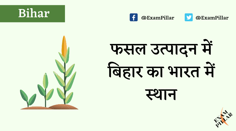 Place of Bihar in Crop Production