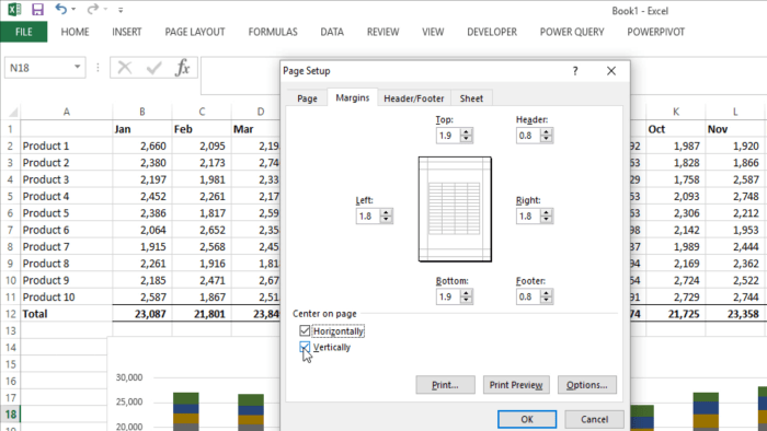 Print Options in Excel