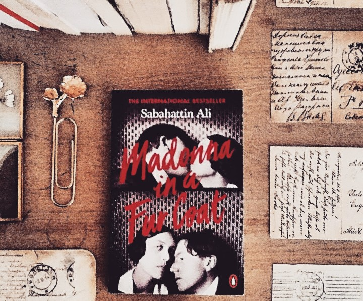 Madonna  in a Fur Coat by Sabahattin Ali | Book Review