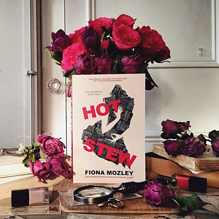 Hot Stew by Fiona Mozley | Book Review