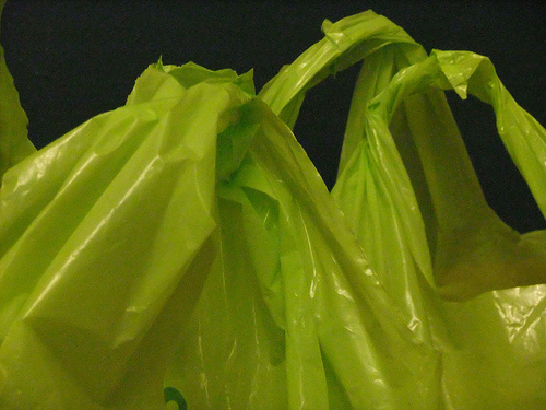 carrier bag photo
