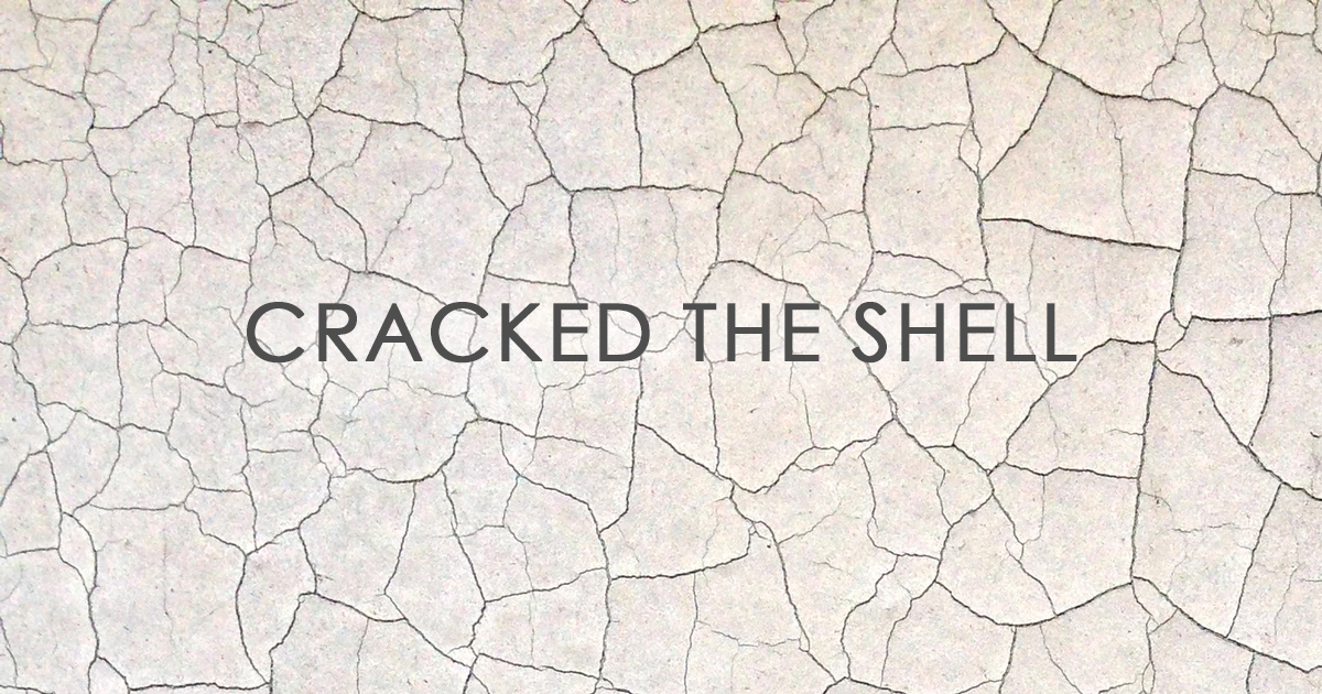 You are currently viewing Cracked The Shell