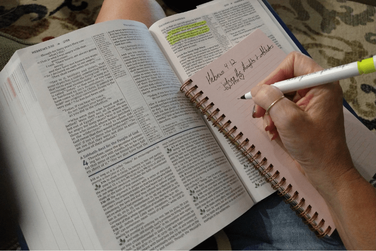 NIV Bible Study Review