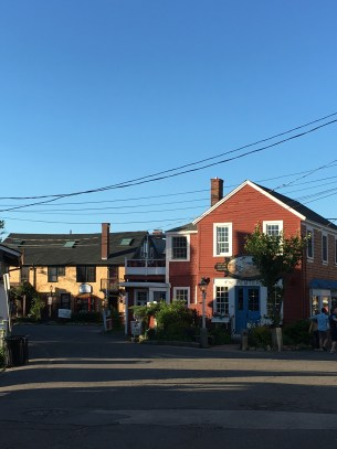 BEARSKIN NECK SHOPS 1