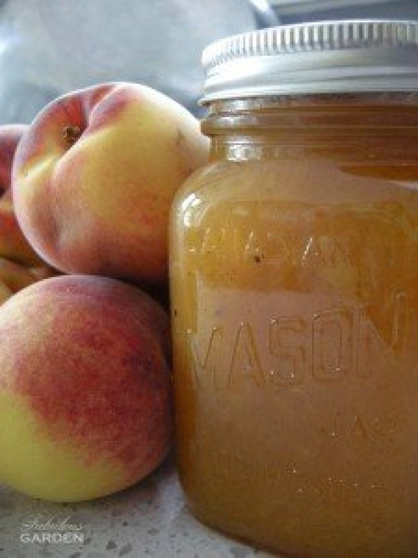 peach jam in a jar and 2 peaches