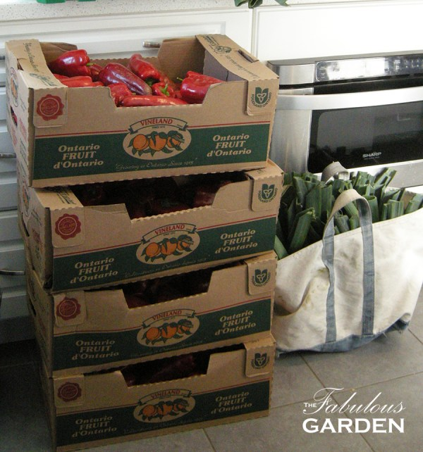 cases-of-peppers