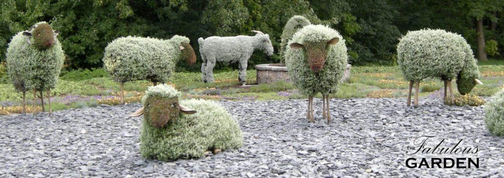 mosaiculture sheep