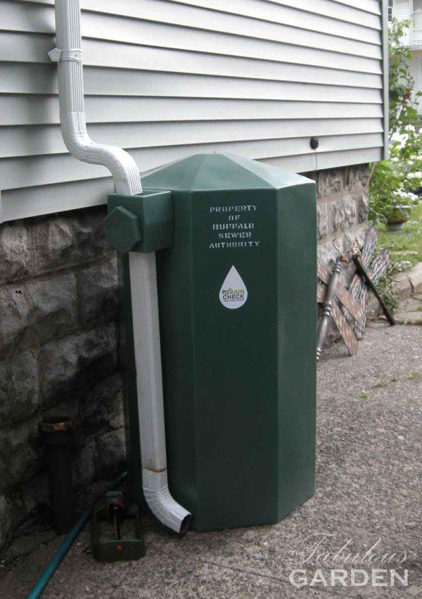 Rain barrel provided by the Buffalo public works