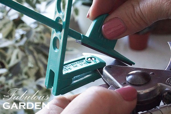 How to sharpen your secateurs (pruners)