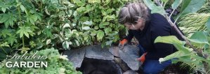 How to build a small pond or water feature