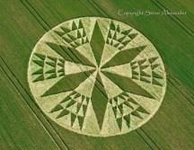 crop circles (13)