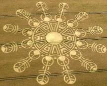 crop circles (16)