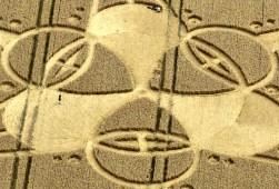 crop circles (19)