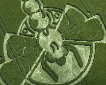crop circles (229)