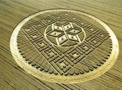 crop circles (250)