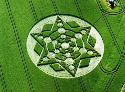 crop circles (270)