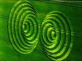 crop circles (294)