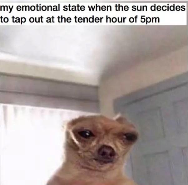4 depressing meme accounts