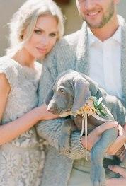 pets-in-weddings-carmen-santorelli-via-brides