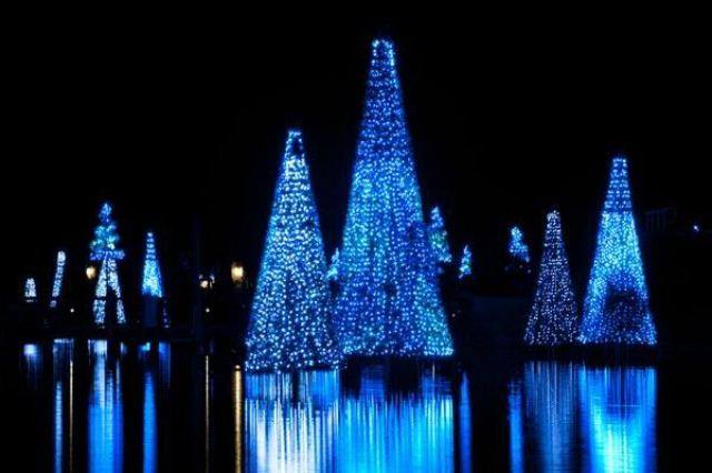 Just one of the many light displays in Sea World Orlando. I love these changing lights reflecting off the water... photo by Orlando Sentinal